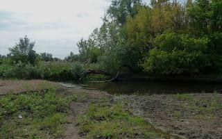 Клебан-Бик. Річка Кривий Торець