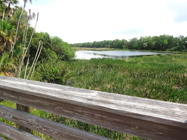 Green Cay Wetlands, Florida