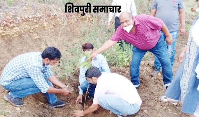 ग्रीन शिवपुरी क्लीन शिवपुरी के तहत अभियोजन परिवार ने किया वृक्षारोपण / Shivpuri News
