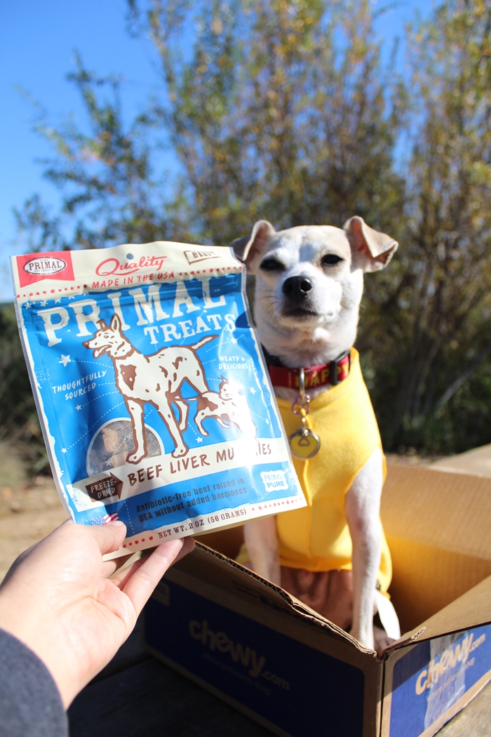 Freeze Dried Dog Food For Survival