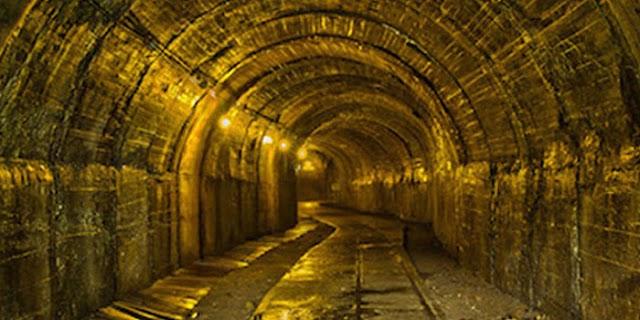 SINGRAULI मप्र की जमीन में दबा है अकूत स्वर्ण भंडार, कम से कम 7.2 मिलियन टन | MP NEWS