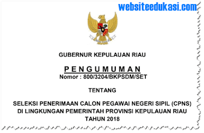 Pengumuman Pendaftaran CPNS 2018 Provinsi Kepulauan Riau