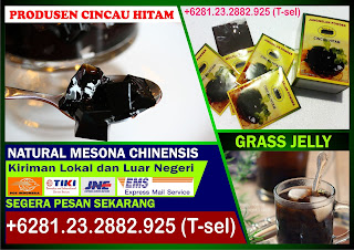 +6281.24.936.2824, Grass Jelly Powder, Bubuk Cincau Hitam Instan, Pembekal Cincau