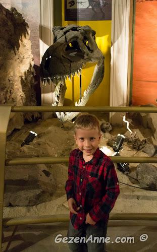 dinozor iskeletlerinin sergilendiği müzede dolaşırken, Jurassic Land Forum İstanbul