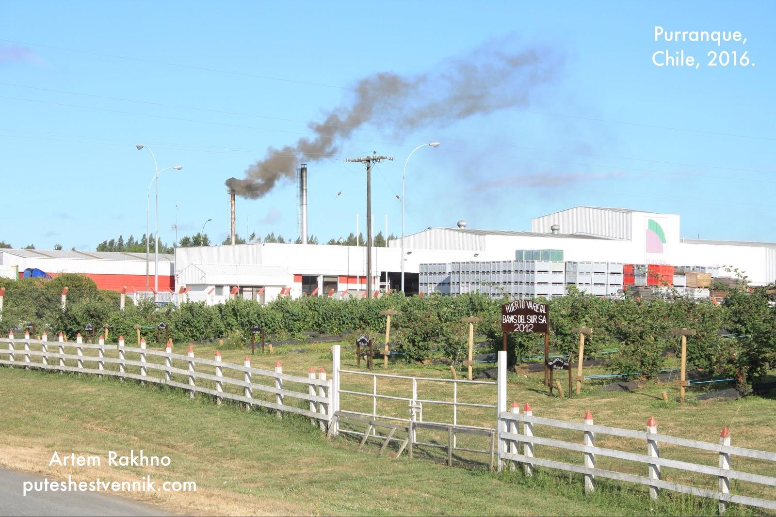Завод в Чили