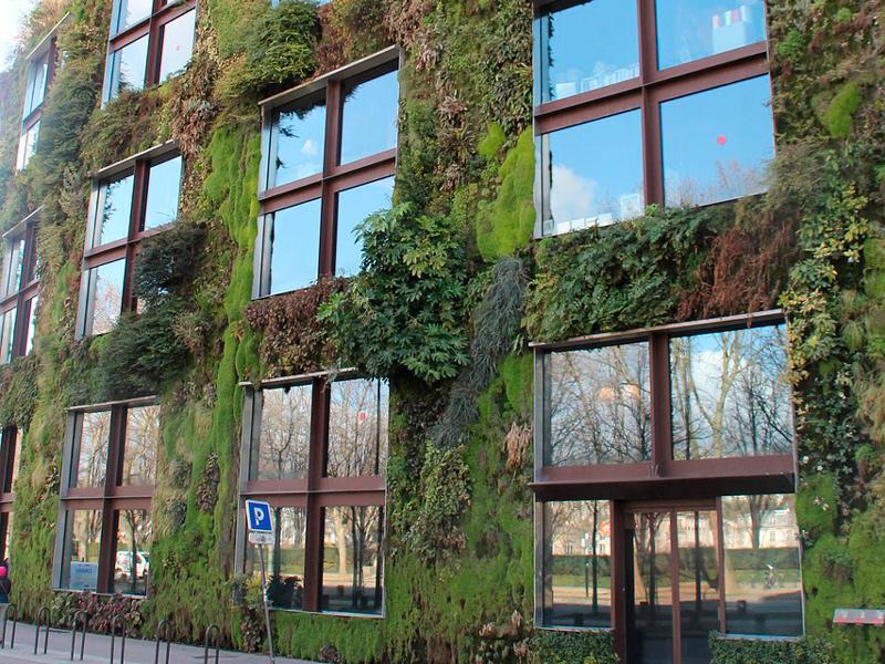 Un jard n vertical casero para tu hogar casas ecol gicas for Jardin vertical materiales