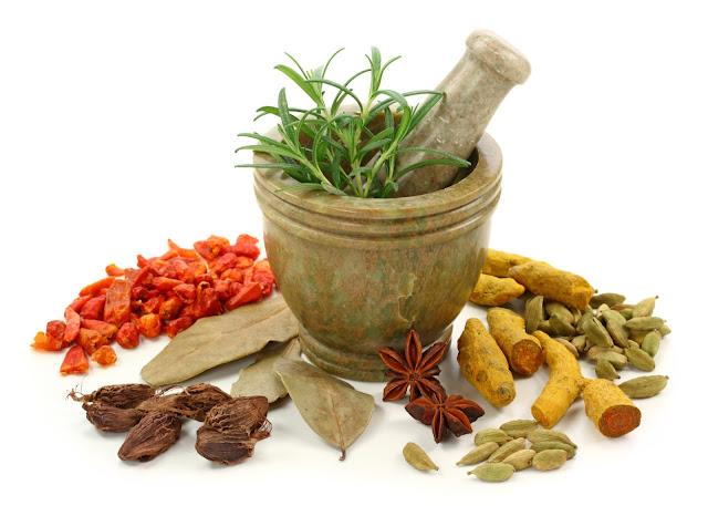 Obat Herbal Penyakit Lambung