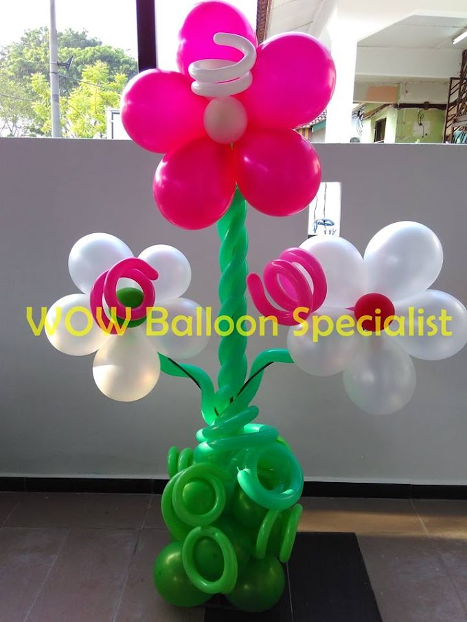 Belon Hiasan Party Wow Ballon