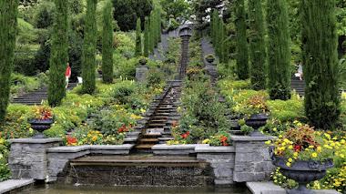 Mainau, la isla de las flores del conde jardinero