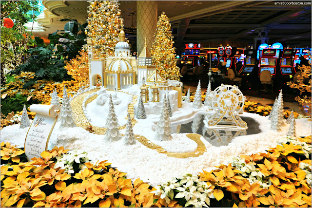 Wynn's Winter Wonderland: Moluccas