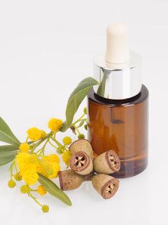 Ecalyptus Oil