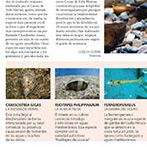 http://conchiduran.blogspot.com.es/search/label/Expr%C3%A9s