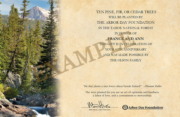 Arbor Day Foundation trees in celebration certificate - a great stocking stuffer for outdoor enthusiasts