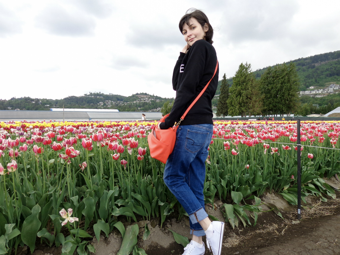 A Day In The Tulip Fields | Jackie O My