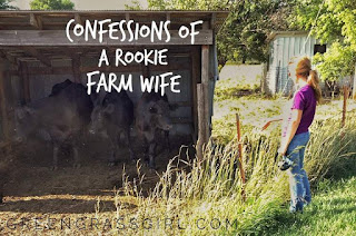 Country Fair Blog Party Blue Ribbon Winner: Green Grass Girl's Confessions of a Rookie Farm Wife