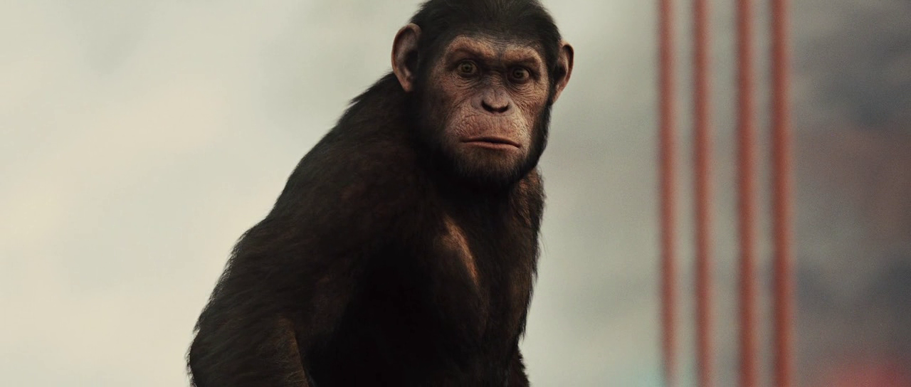 War For The Planet Of The Apes 2017 Dual Audio Brrip Hd
