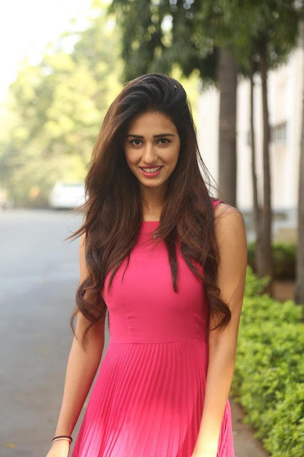 Telugu Actress Disha Patani Stills  Loafer Success Meet