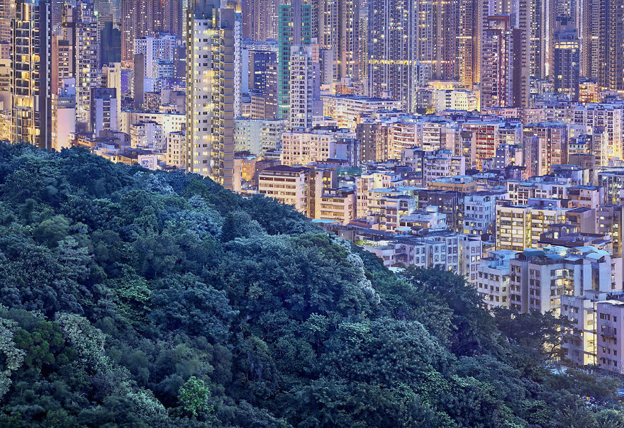 Nature in Hong Kong