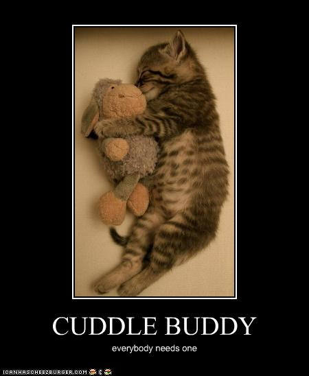 I Want To Cuddle With You Quotes: Write About Love: Cuddle Buddy
