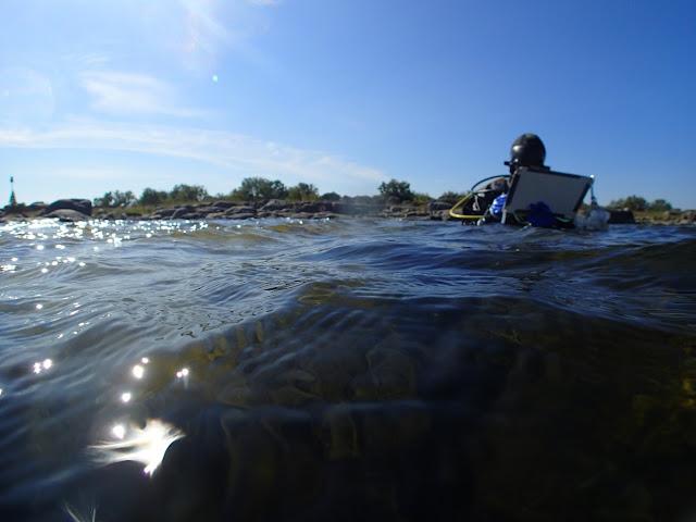 Sukeltaja vedessä, kirjoittamassa muistiinpanoja.