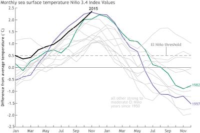 Graphique montrant l'évolution de la température de la surface de l'Océan Pacifique équatorial pour différentes années, montrant que les années 97-98 et 15-16 sont au coude-à-coude au sommet.