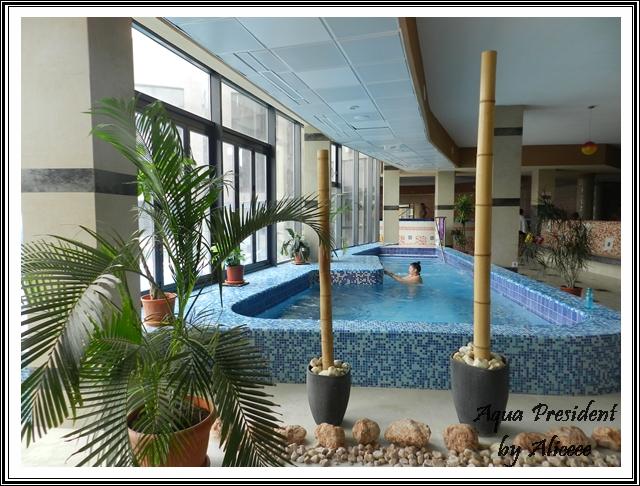 felix-aqua-president-piscina