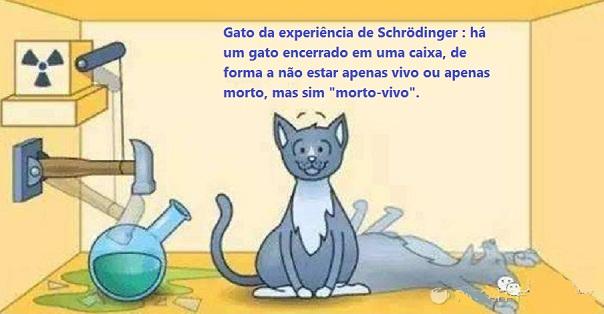cat Gato de Schrödinger