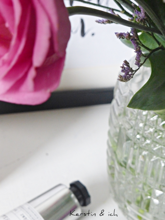 Großaufnahme Japanrose und Glasvase