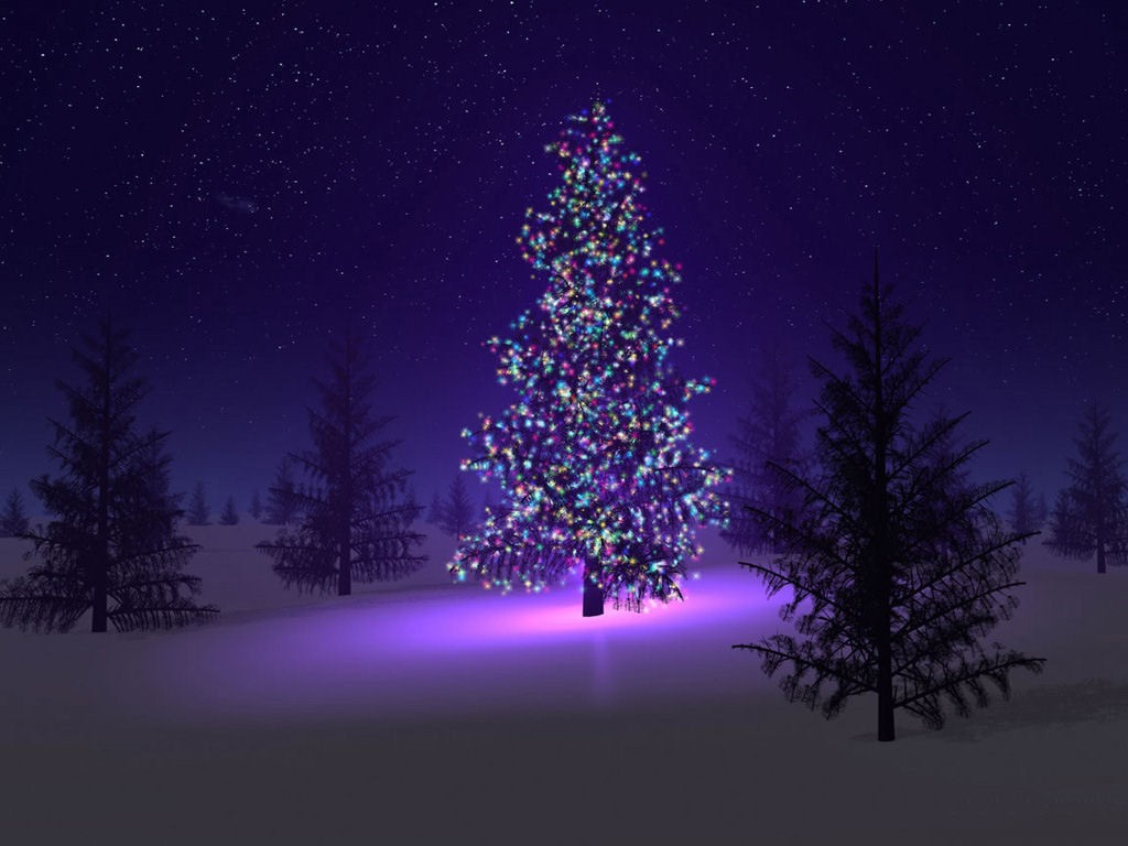 Christmas Tree Nature Background