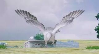 Falcon adalah burung yang akan menemani anda saat permainan berlangsung. Tidak banyak fungsi dari alcon, hanya saja ia akan menjadi teman anda saat bermain. Dan berikut lokasi falcon berada.