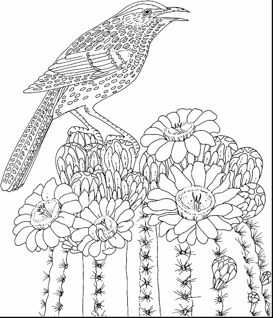 Beautiful Hard Coloring Pages Flowers Adults With Adults Coloring Pages And  Free Printable Adults Coloring Pages