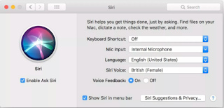 Set up Macos high sierra siri Settings