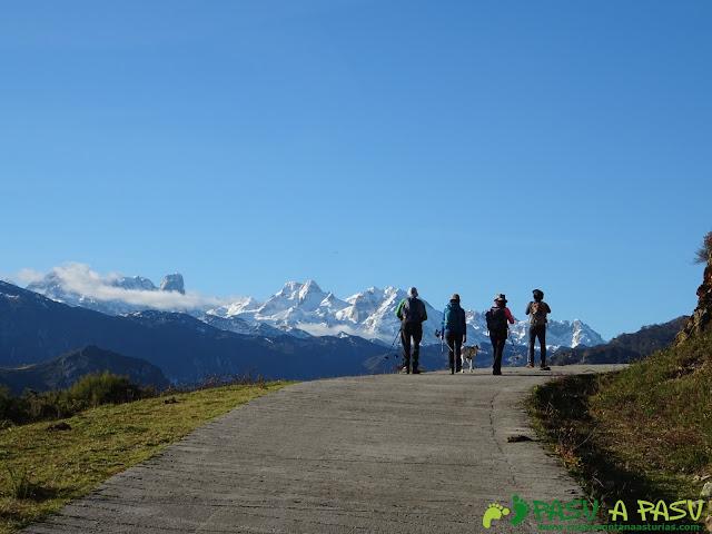 Picos de Europa desde Peñamellera Alta