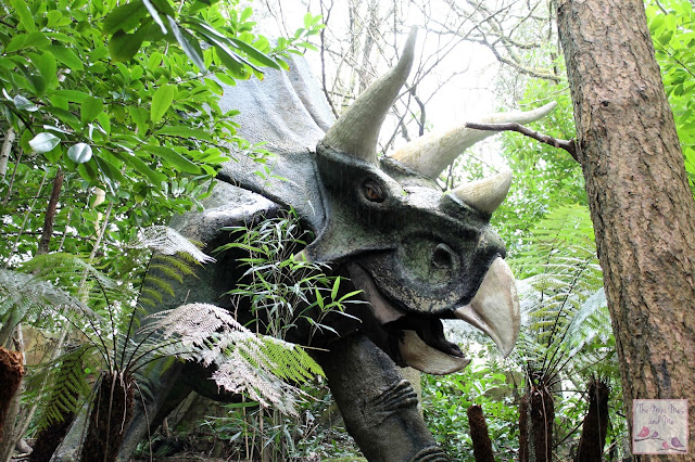 Wildlife and Dinosaur Park Devon - Triceratops