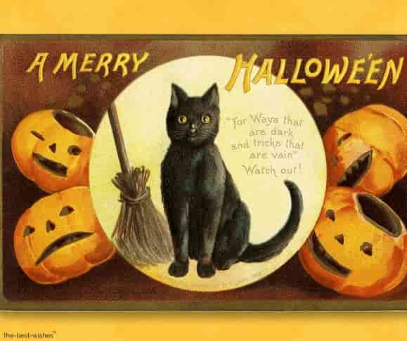 halloween vintage card picture
