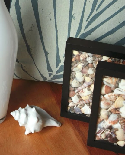 Shadow Box Frame Ideas for Seashells