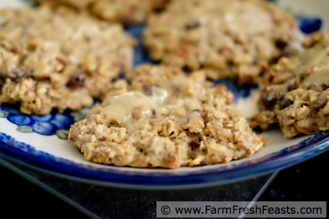 a plate with a close up of healthy gluten and refined sugar free breakfast cookies