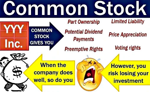 Pengertian Saham Biasa (Common Stock)