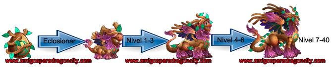 imagen del crecimiento del dragon bohemio