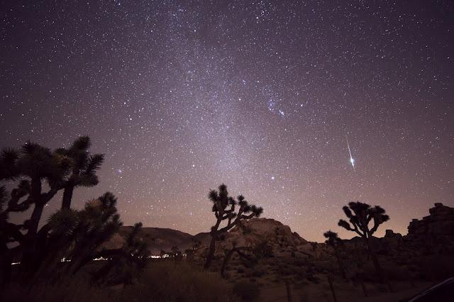 Quả cầu lửa từ trận mưa sao băng Taurid bên trên những cây Joshua ở California, Hoa Kỳ. Hình ảnh: Channone Arif.