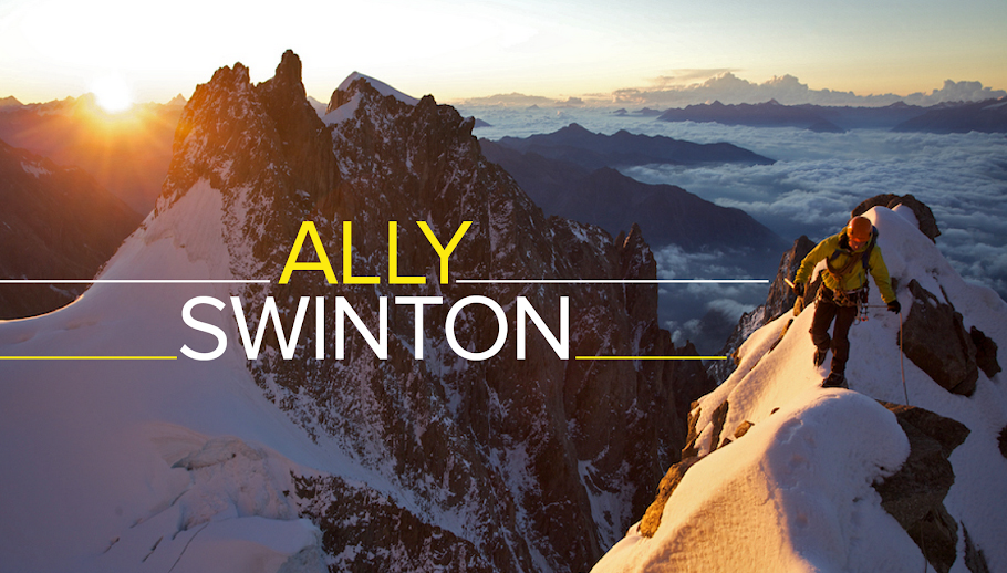ally swinton blog