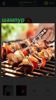 На мангале жарится шашлык на шампуре вместе с овощами