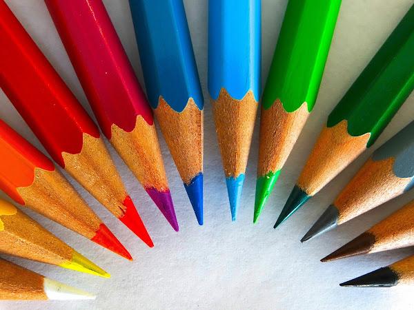 A campaign of colour | Lifestyle