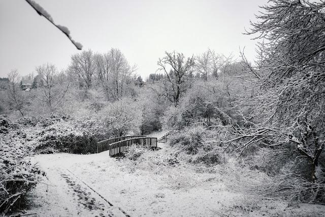 Winter im Fockendorfer Grund in Zeitz