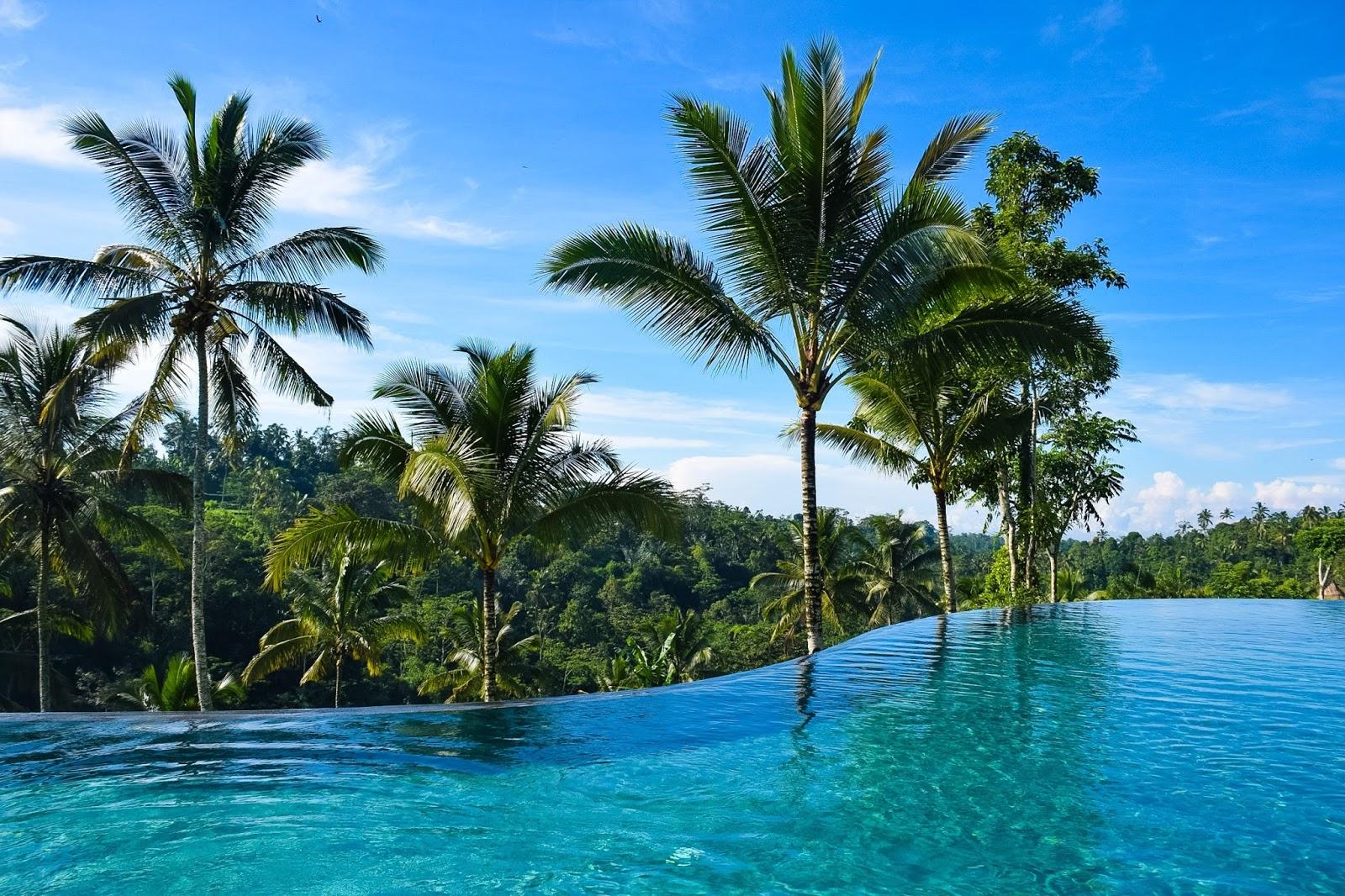 pool at padma resort ubud