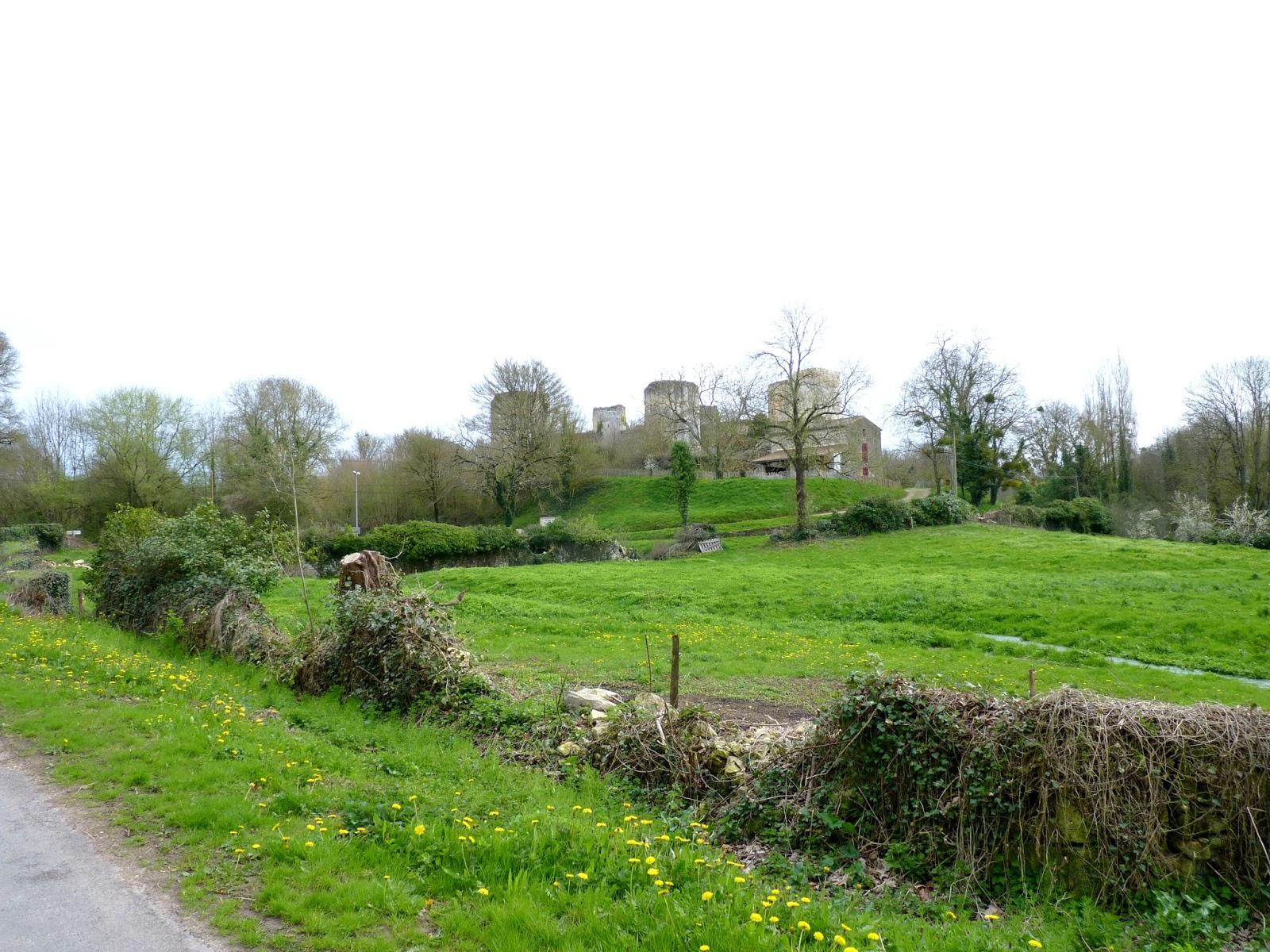 Château de Coudray-Salbart, Echiré
