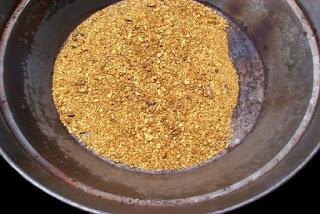 Resultado de imagem para fotos de bateia cheia de ouro