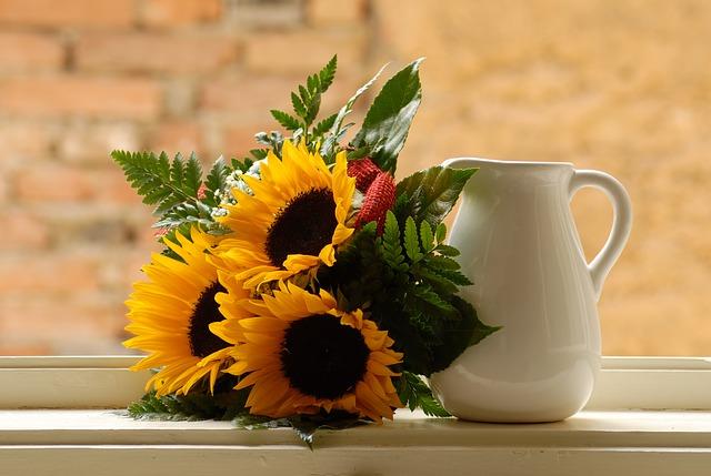y nghia hoa mat troi