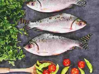 к чему снится рыба, сонник рыба