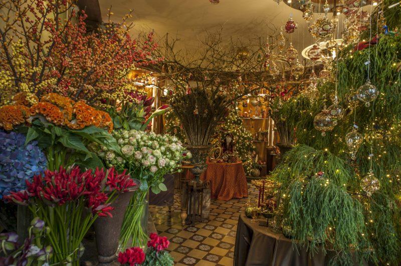 Tienda Floreal en Sint-Kiklaas, Bélgica